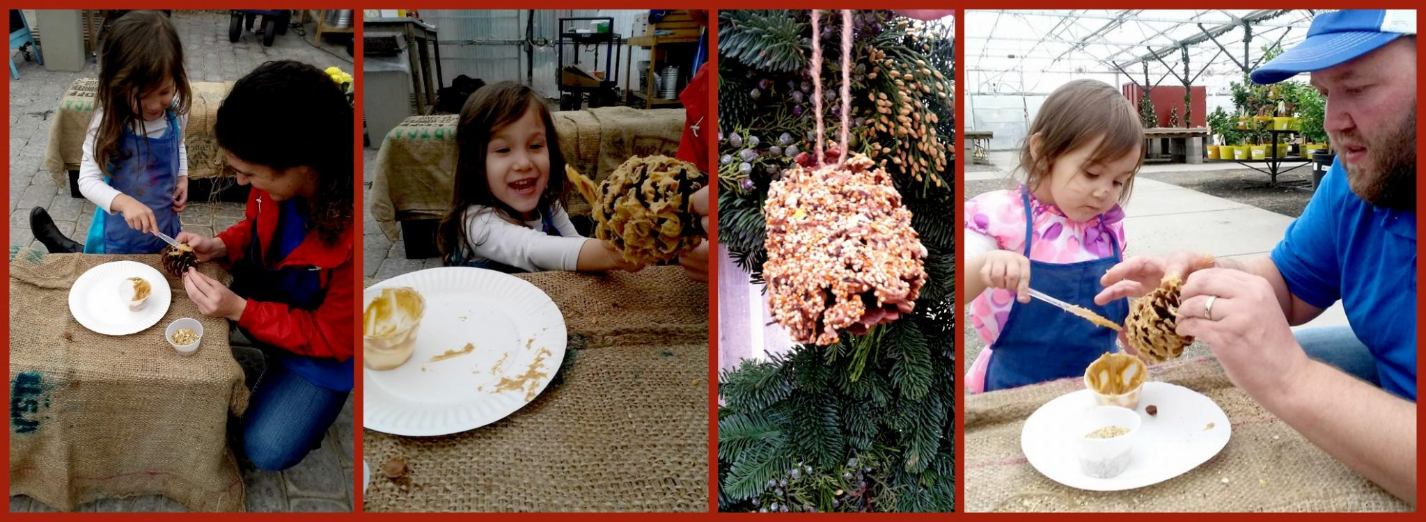 SGCK pinecone feeder collage PM